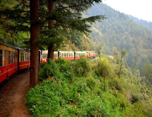 Trenino verde dell' Ogliastra da Arbatax